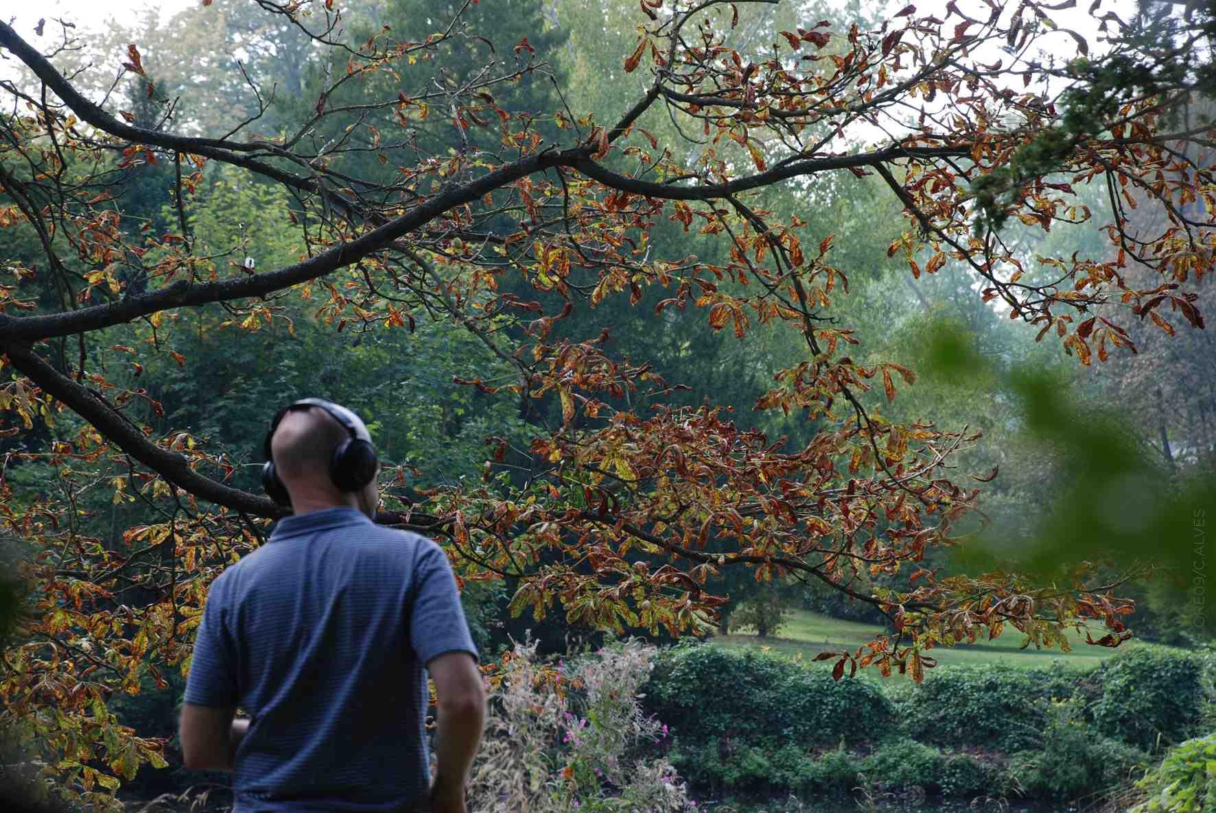 Annabel Vergne - arbres ciel colline © Catherine Alves